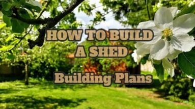 Build A Storage Shed Cheap -  Study Build A Storage Shed Cheap - Shed Plan