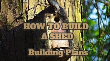 Building A Small Storage Shed Cheap -  Study Building A Small Storage Shed Cheap - Plans For a...